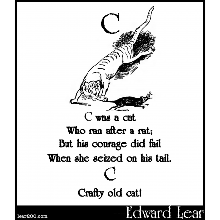 C was a cat