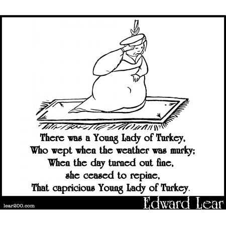 There was a Young Lady of Turkey
