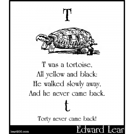T was a tortoise