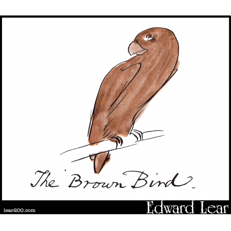 The Brown Bird