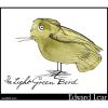 The Light Green Bird