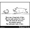 There was a Young Lady of Clare